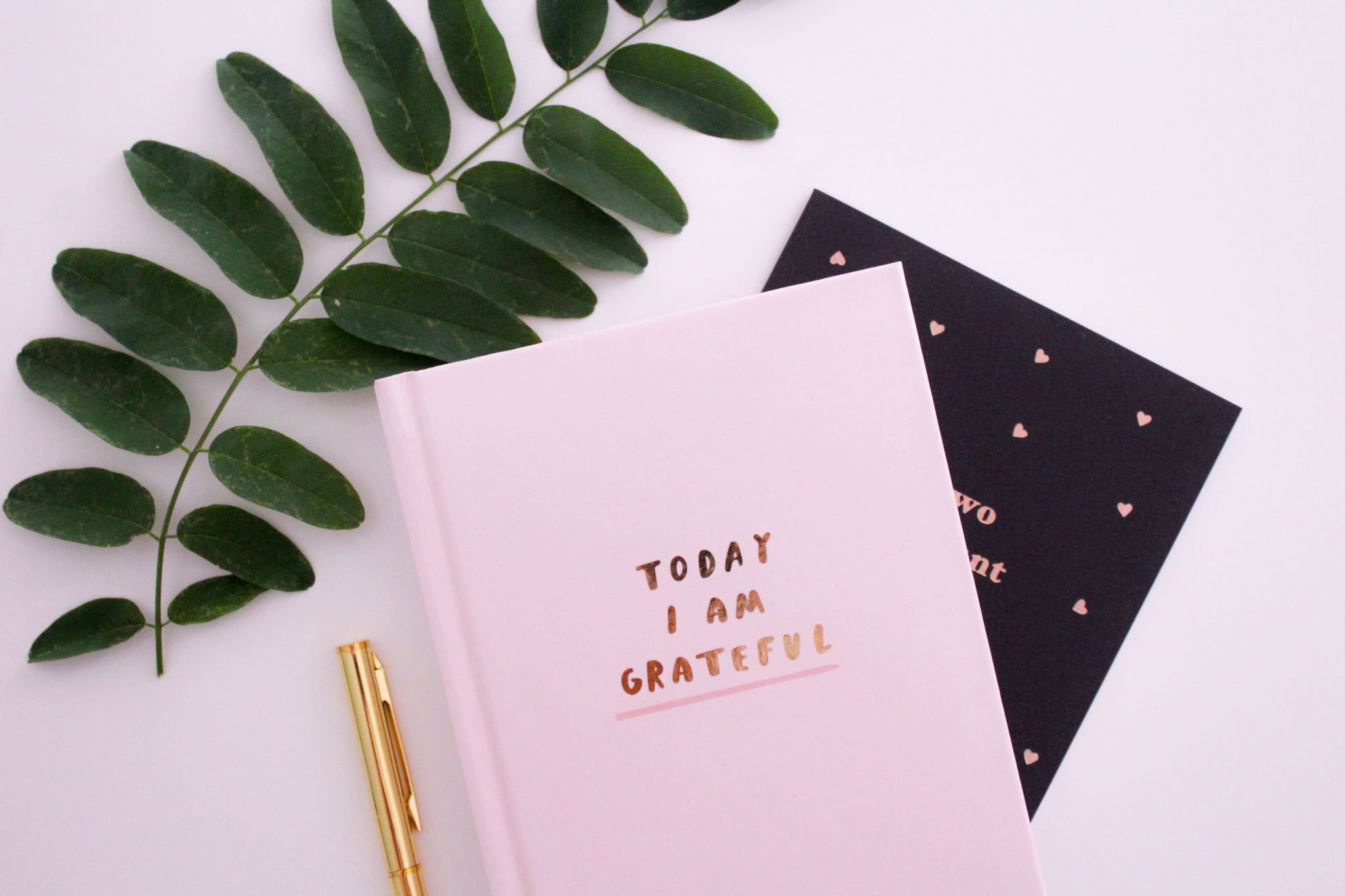 Utiliser la gratitude pour changer la perception de sa vie